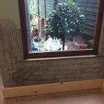 midland-damp-doctor-case-study-1-rendered-window-wall